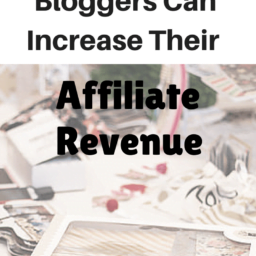 7 Ways Bloggers Can Increase Affiliate Revenue 7 Ways Publishers Can Increase Their Affiliate Revenue 7 Ways Publishers Can Increase Their Affiliate Revenue 7 Ways Bloggers Can Increase Affiliate Revenue 256x256