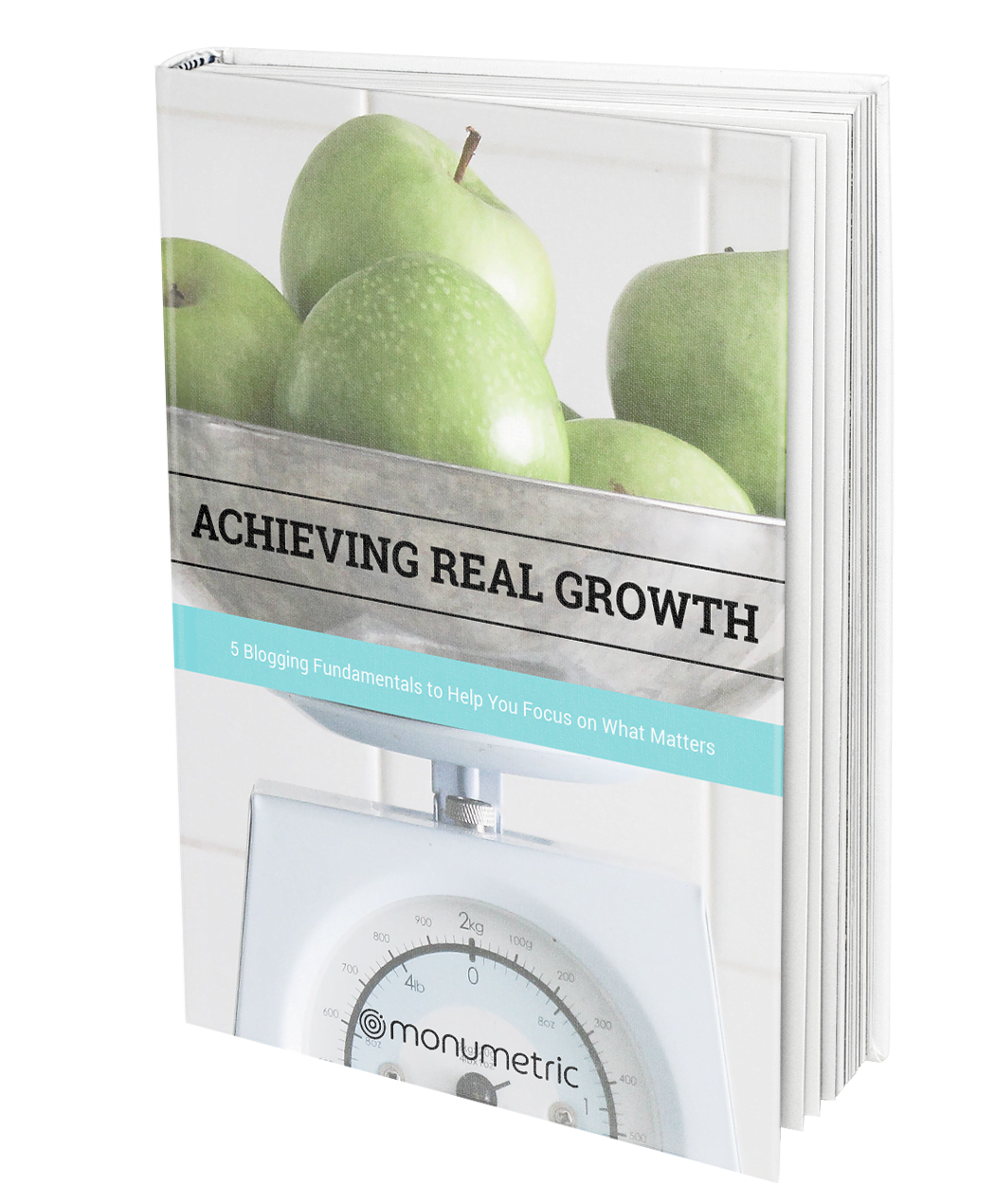 ACHIEVING REAL GROWTH EBOOK Growth EBook MockUp