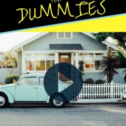 video ads VIDEO ADS FOR DUMMIES (or just anyone still afraid of them) VIDEO ADS 256x256