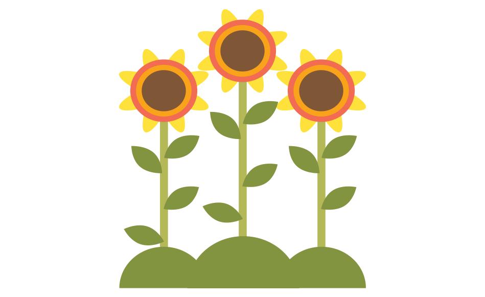 monetization APPLES flower1
